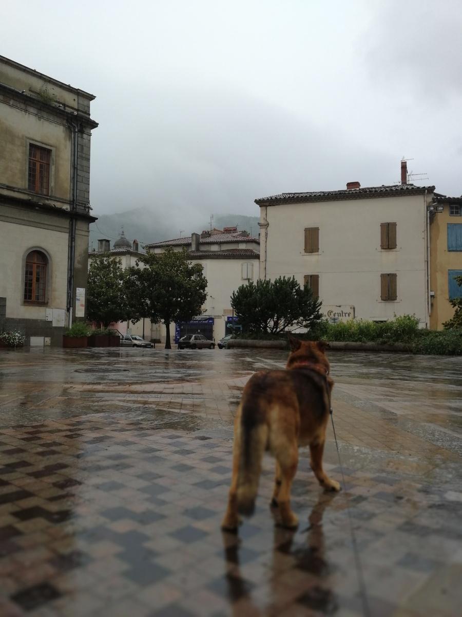 Rainy day in Mazamet, Montagne Noire