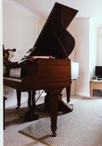 Graeme the Baby Grand Piano
