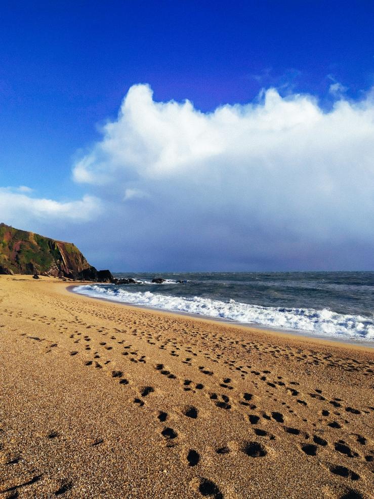 Greetings from Devon
