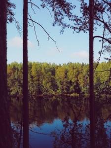 Finnish Lakes